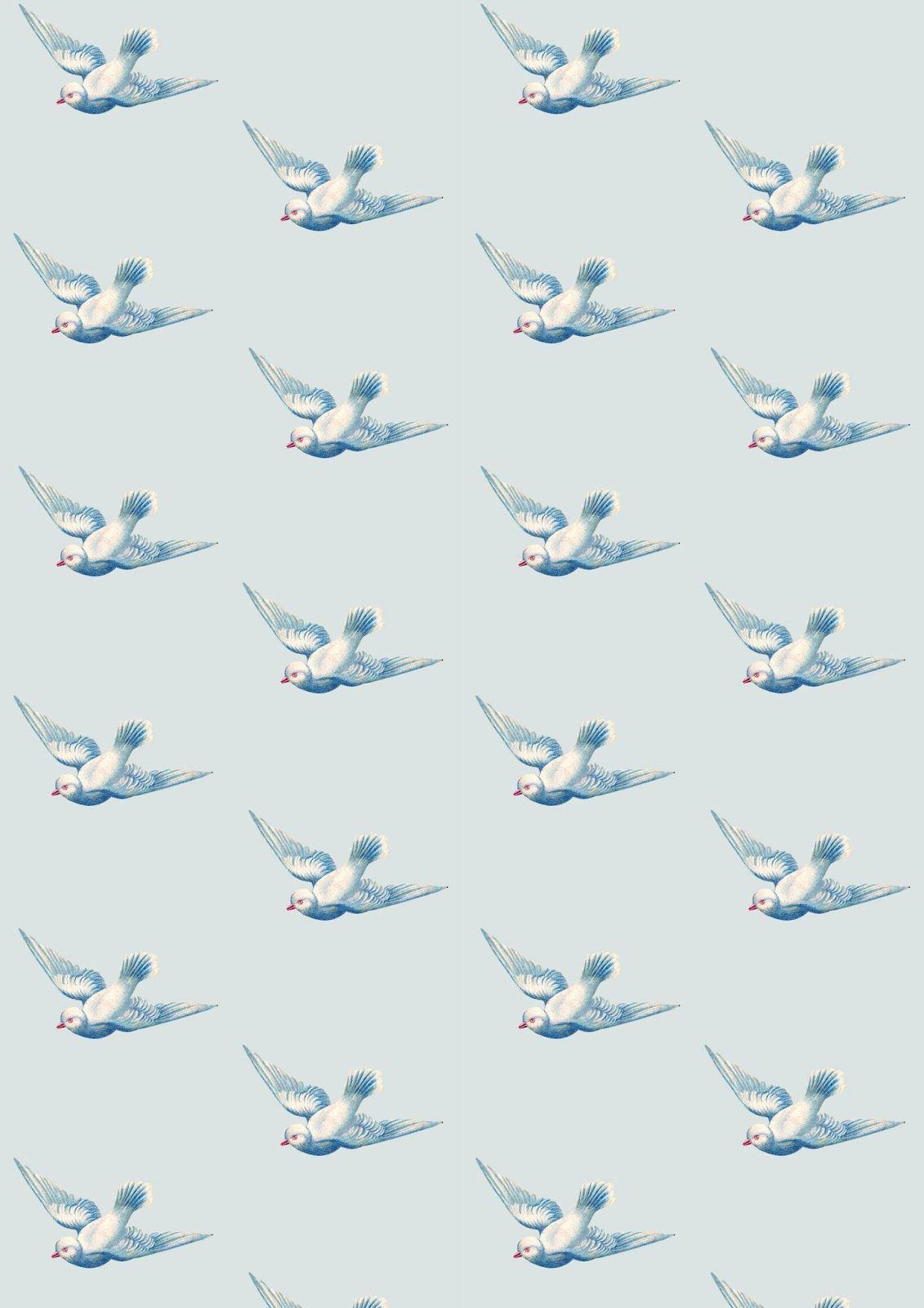 Pin De Claudia Ribeirao De Freitas Em Patterns Birds And Feathers