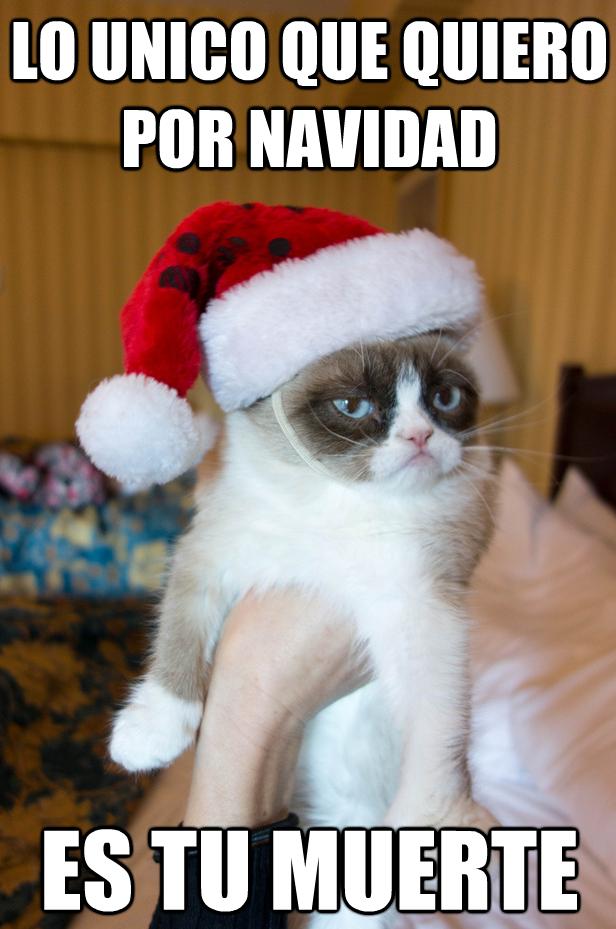 Navidad Y Regalos Grumpy Cat Christmas Grumpy Cat Humor Grumpy Cat