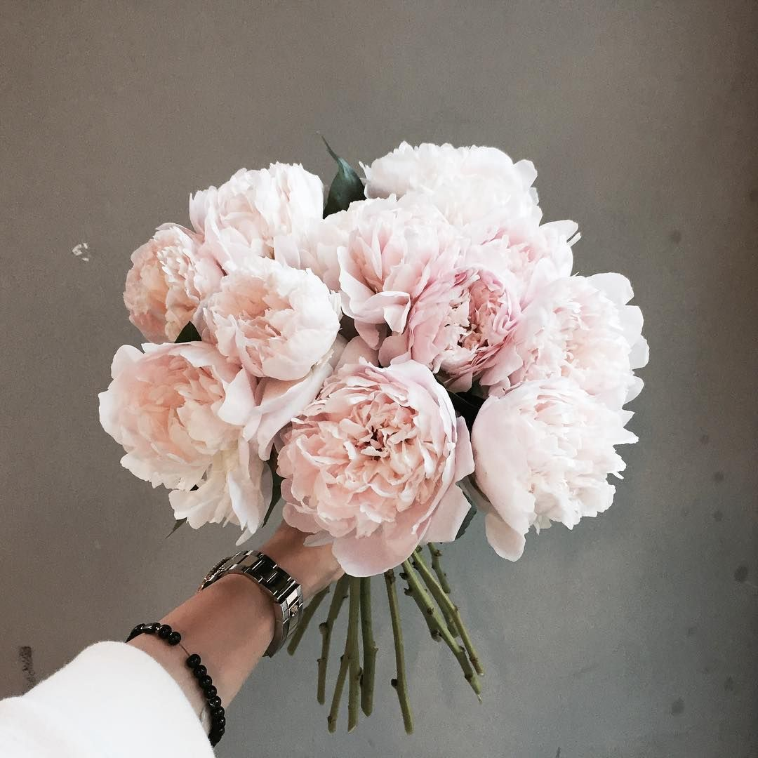 Instagram photo by 플로리스트 이주연 florist Lee Ju Yeon • Apr 2