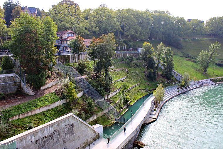 Bear park in Bern. switzerland