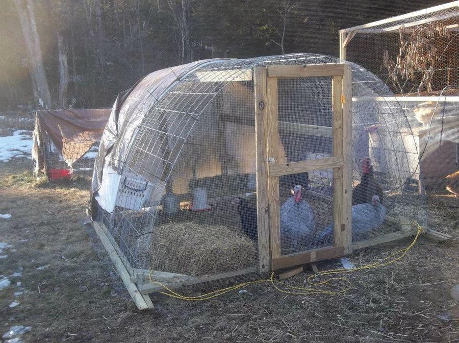 Turkey shelter byc turkeys pinterest coops duck for Duck shelter designs