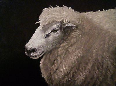 Sheep-Portrait-Original-Oil-Painting-on-Box-Canvas-by-Sian-Sloman-9-034-x-12-034
