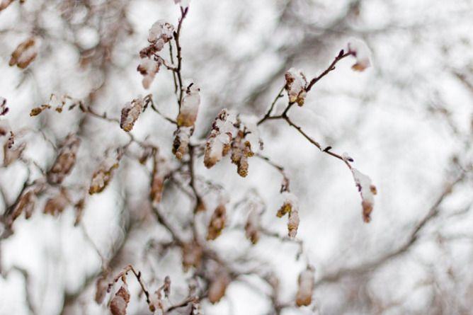 Så du skjønnheten? Flere bilder og ord i innlegget på http://bilderfrahjertet.com/sa-du-skjonnheten