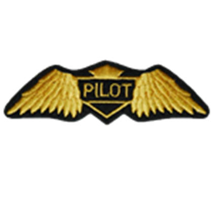 Pilot Badge Roblox Pilot Badge Photoshoot Outfits