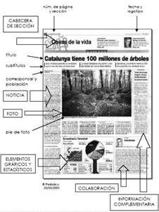 Pin by anto rome on tipos de textos pinterest anchor for Cual es la estructura del periodico mural