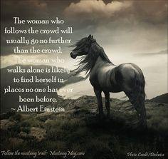 wild horses | Horse quotes, Einstein quotes, Horses