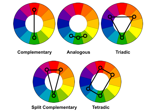 Learn the Basics of Color Theory to Know What Looks Good | Trust ...