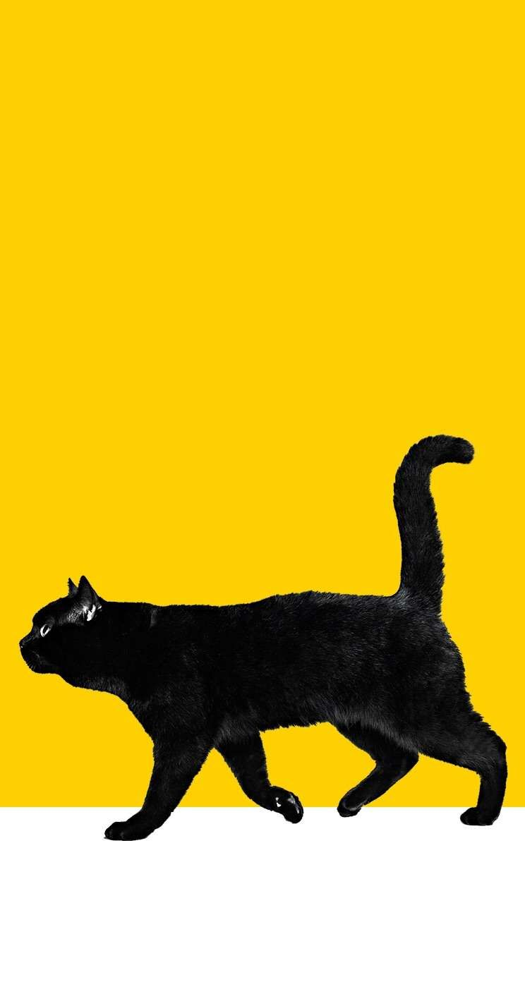 スマホのホーム画面を晒すトピ ガールズちゃんねる Girls Channel ネコ イラスト 猫の壁紙 キャットアート