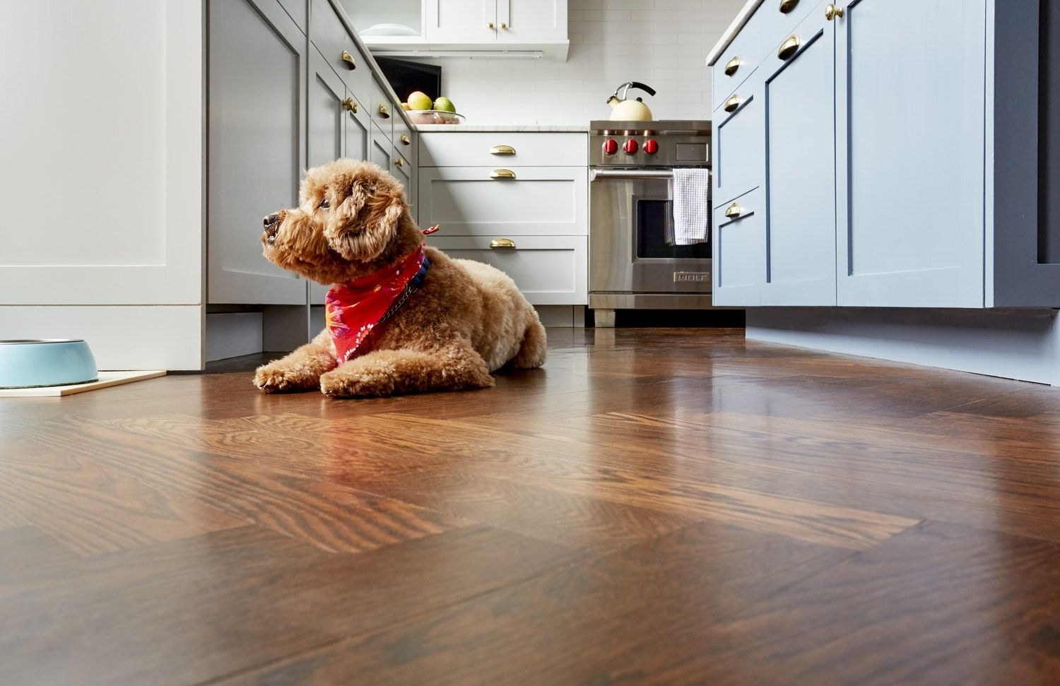 How To Clean Your Hardwood Floors Year Round A Quick Guide