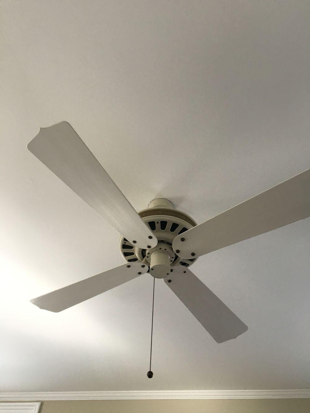 Fan In Office Ceiling Fan Decor Home Decor