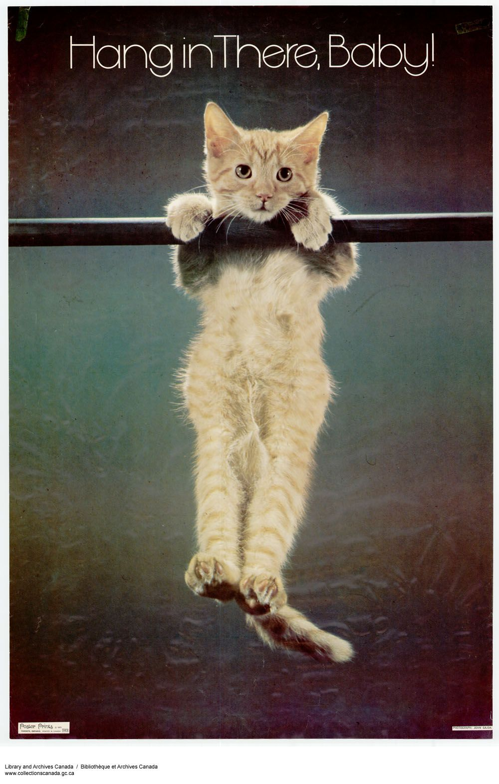 Hang in There, Baby - Cute Cat Poster - Nostalgia Collect