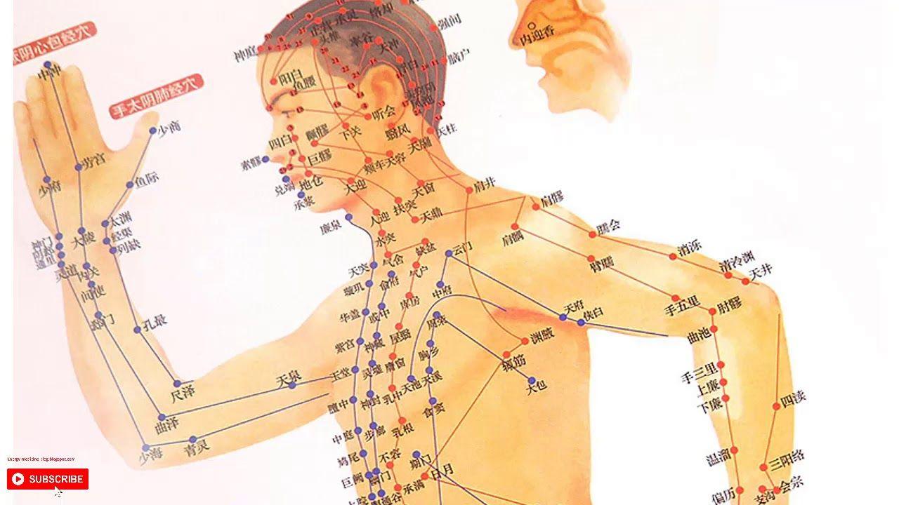 Basic Type Acupressure Points Chart Manual Guide