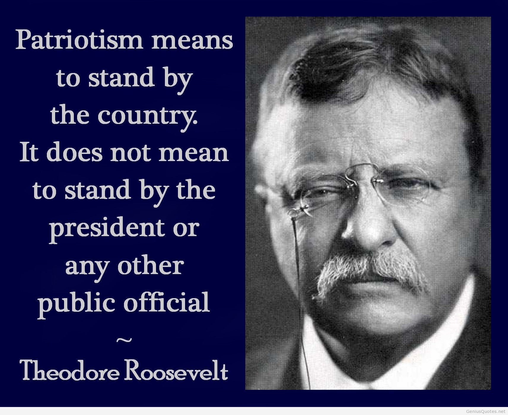 Teddy Roosevelt Quotes Theodore Roosevelt  Quote  America  Pinterest  Roosevelt