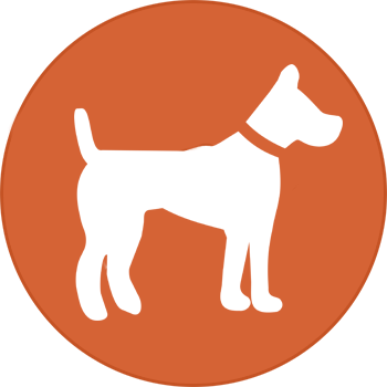 For A Listing Of Your Topical Products Contact The Funnel Guru Bring The Best Reviews Of Your Choice And Let Your Potential Buyers Pet Supplies Pets Pet Store