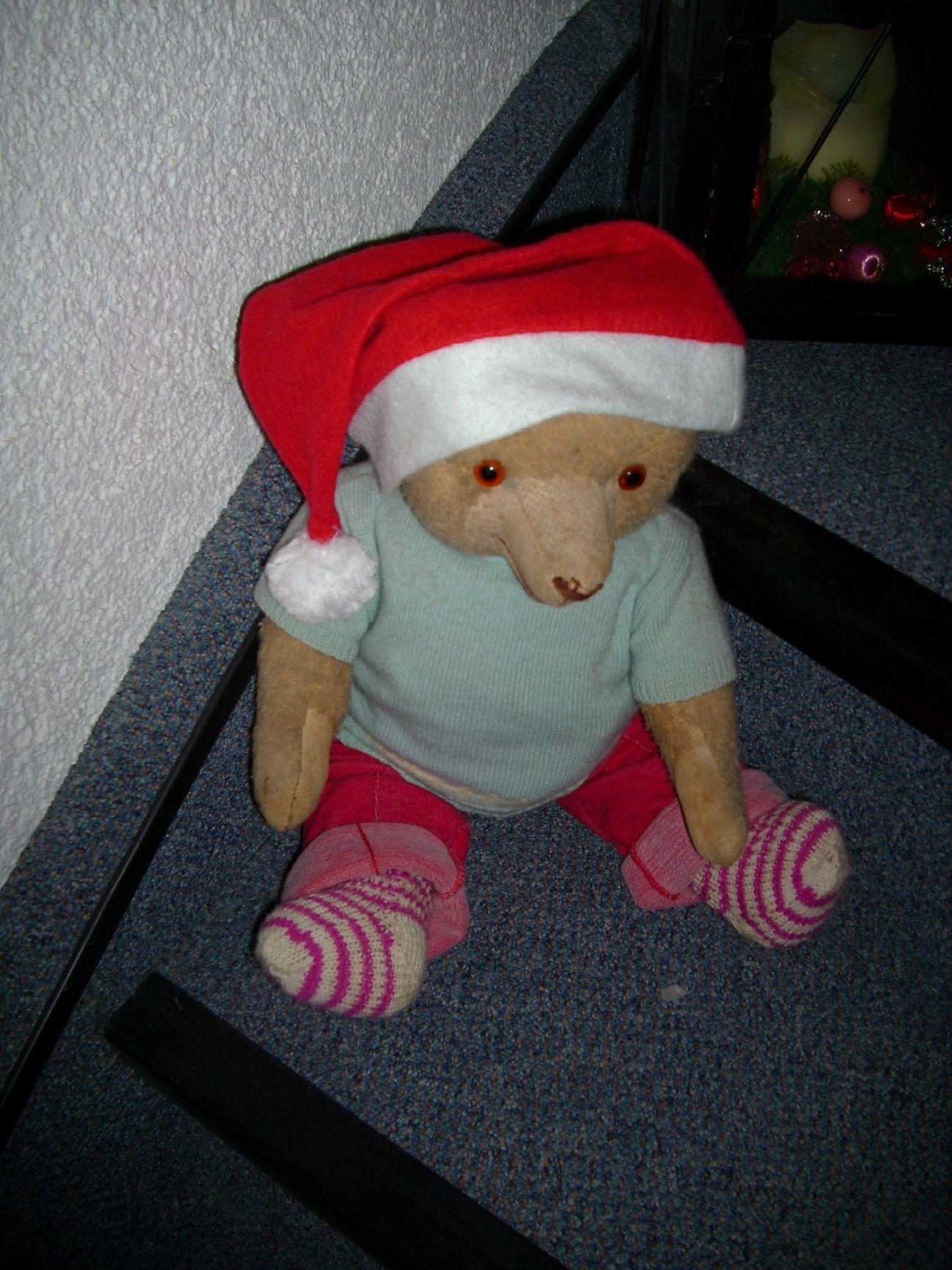 Heute, am 6. Dezember, ist auch der Bären-Nikolaus wieder aktuell.