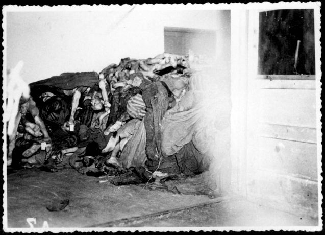Dachau, Germany, 1945, Room filled with corpses.