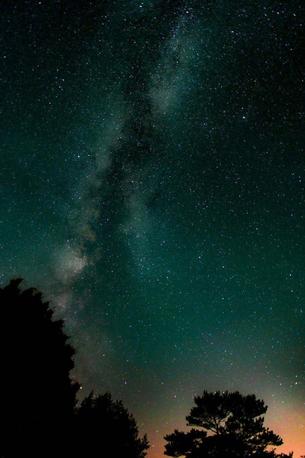 Stelle Viola Cielo Verde Sfondi Hd