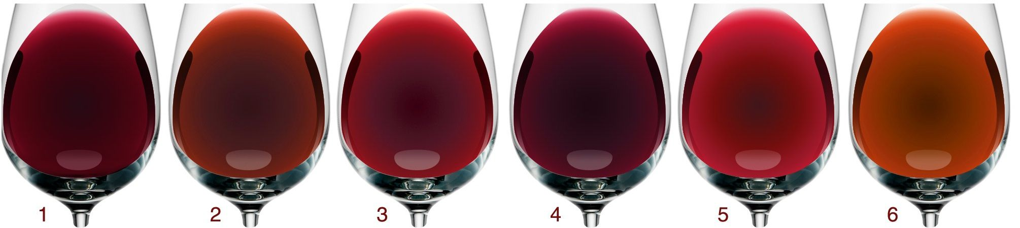 Wine Color Red Wine Color Chart Wine Folly Blind Wine Tasting Party Red Wine