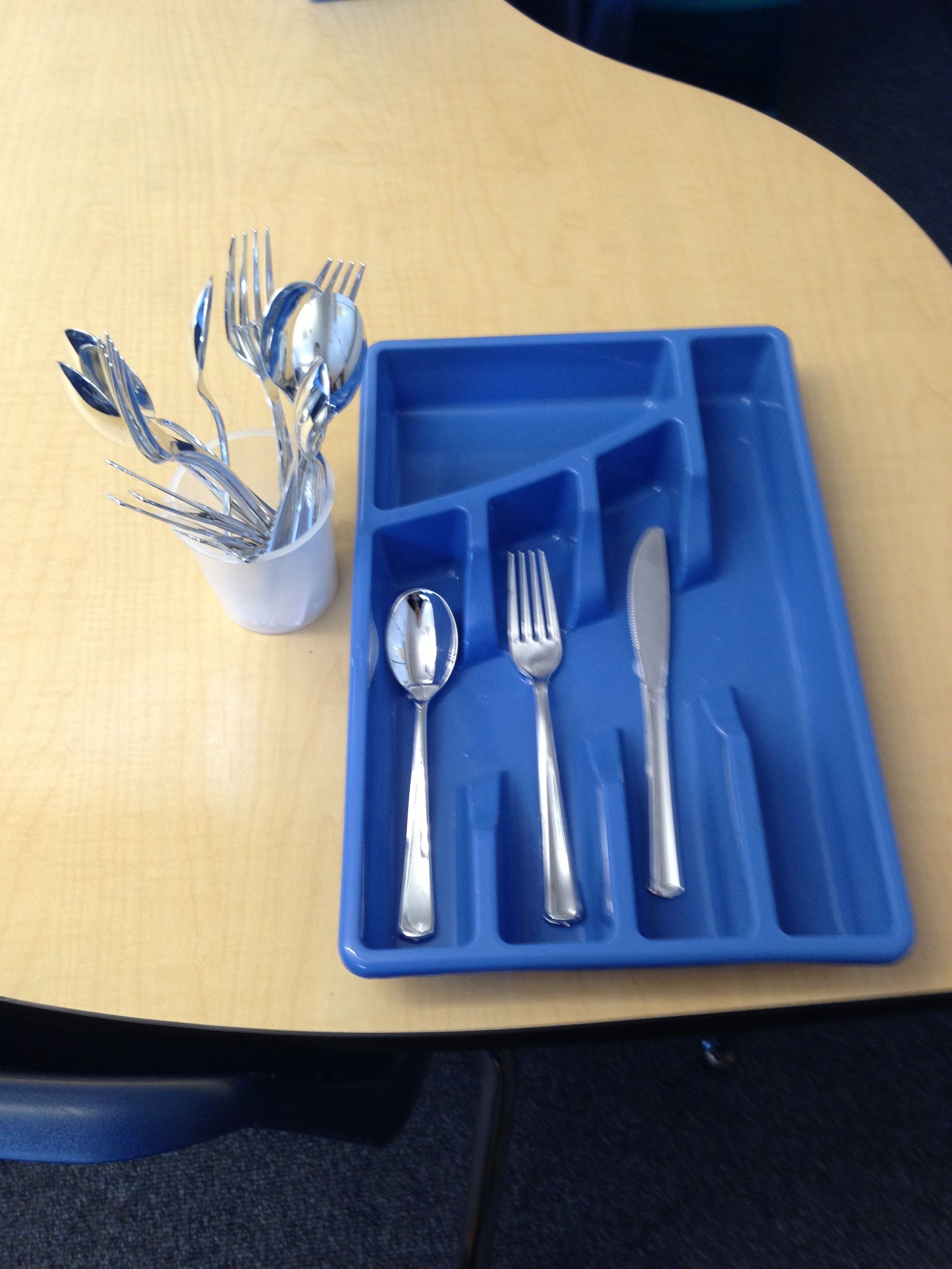 Sorting/life skills... Find items at the dollar tree, use plastic spoons, forks, knives