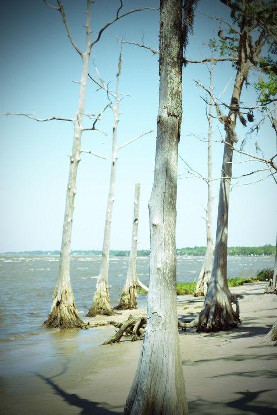 Lake Ponchartrain Louisiana New Orleans Louisiana Lake