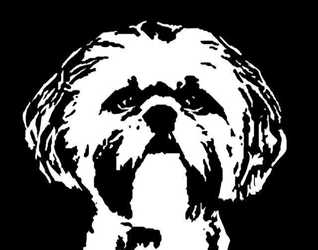 Shih Tzu Black White Stencil Dog Art Print Dog Print Art Dog Stencil Dog Art