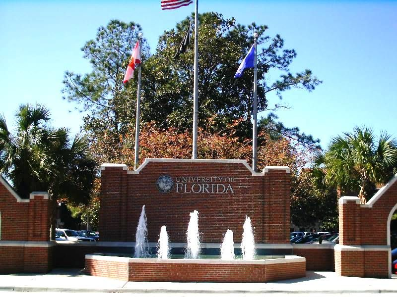 Really interested in University of Florida...will that work out for me?