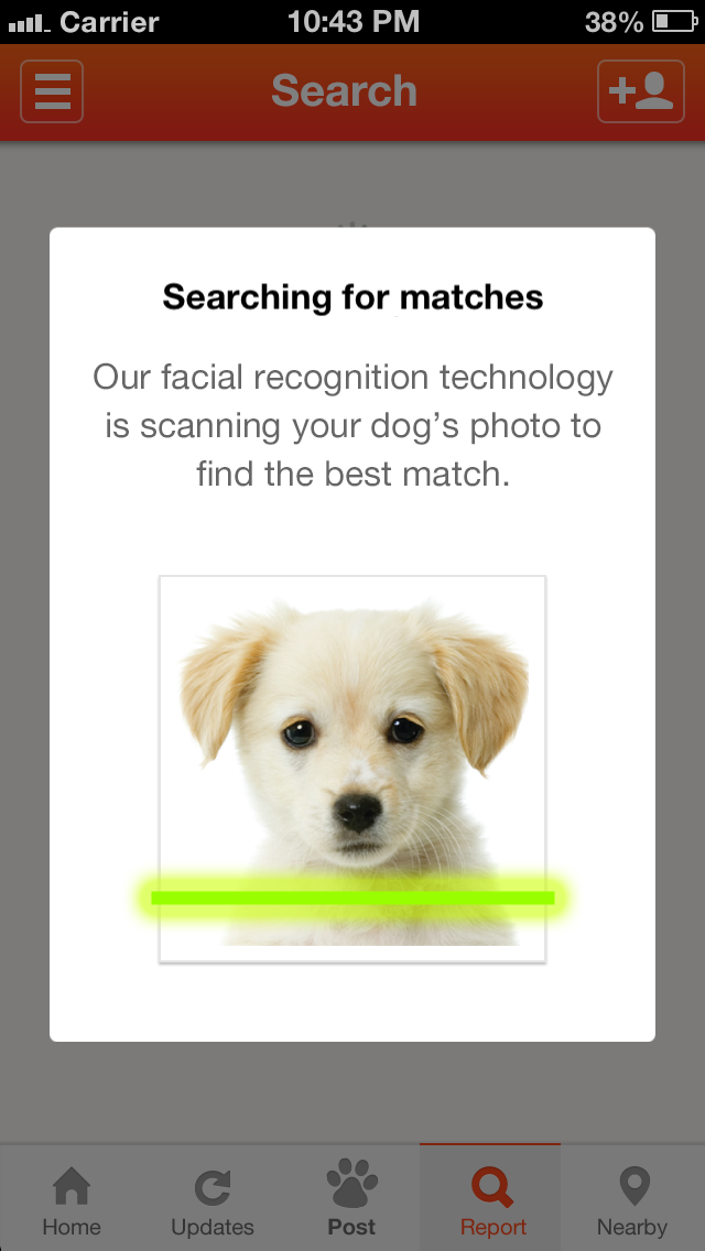 Finding Rover The New App for Lost Dogs Losing a dog