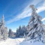 HRS Hotel Deal Edesheim Winterromantik im Schloss 75 EUR