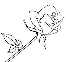 Rosa Roja Para Dibujar Buscar Con Google Rose Coloring Pages Coloring Pages Color