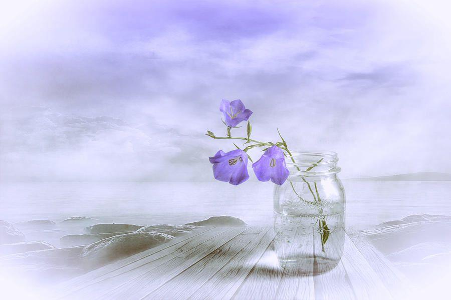 Image from http://images.fineartamerica.com/images-medium-large-5/blue-bells-veikko-suikkanen.jpg.
