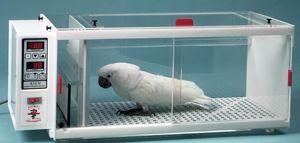 Exotics Pro Care Veterinary Equipment Avian Incubator Pet Clinic Veterinary Vet Clinics