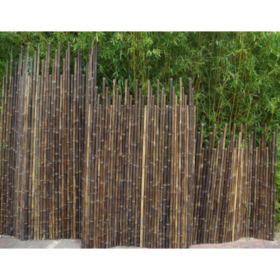Cloture bambou noir : brise-vue Bambouland en bambou naturel noir ...