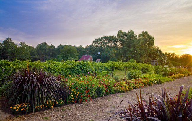 Mr Cason S Vegetable Garden Callaway Gardens Callaway Gardens