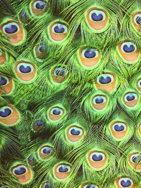 Pauwen tricot