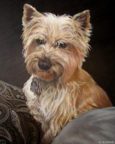 Cairn Terrier Custom Dog Portrait Mo On The Pillows Related To