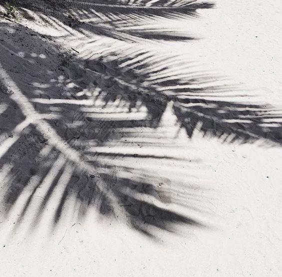 Sun Island Beach Maldives: Beach, Summer Vibes, Tropical Vibes