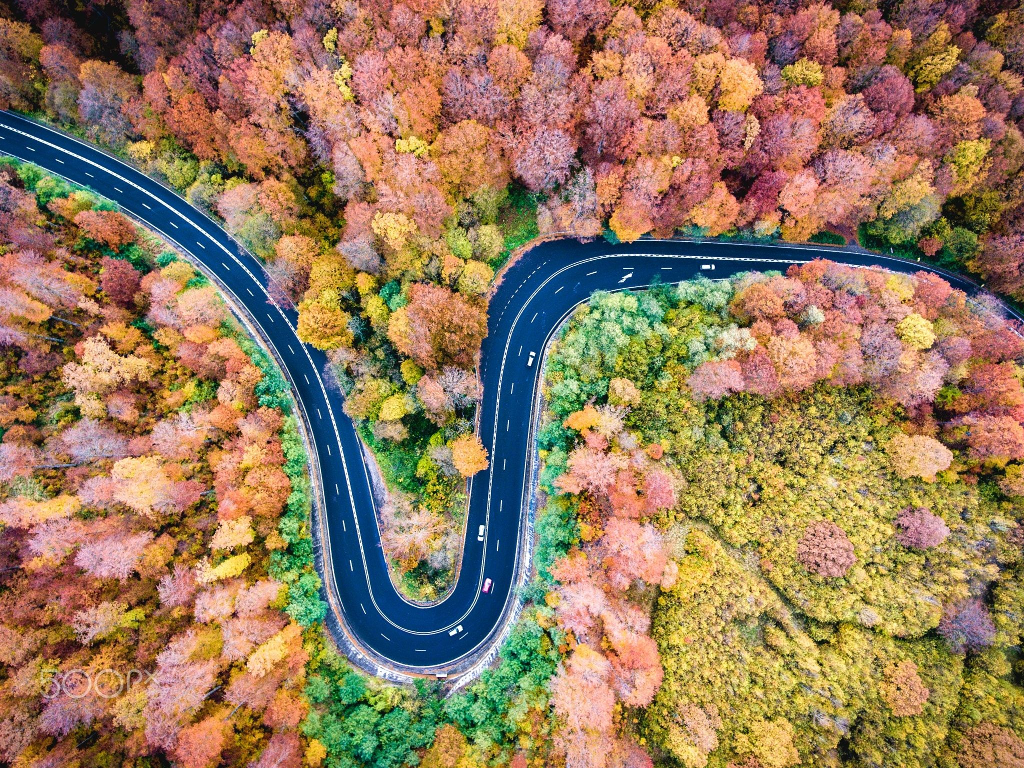 Infinite Road To Transylvania Autumn Version 2