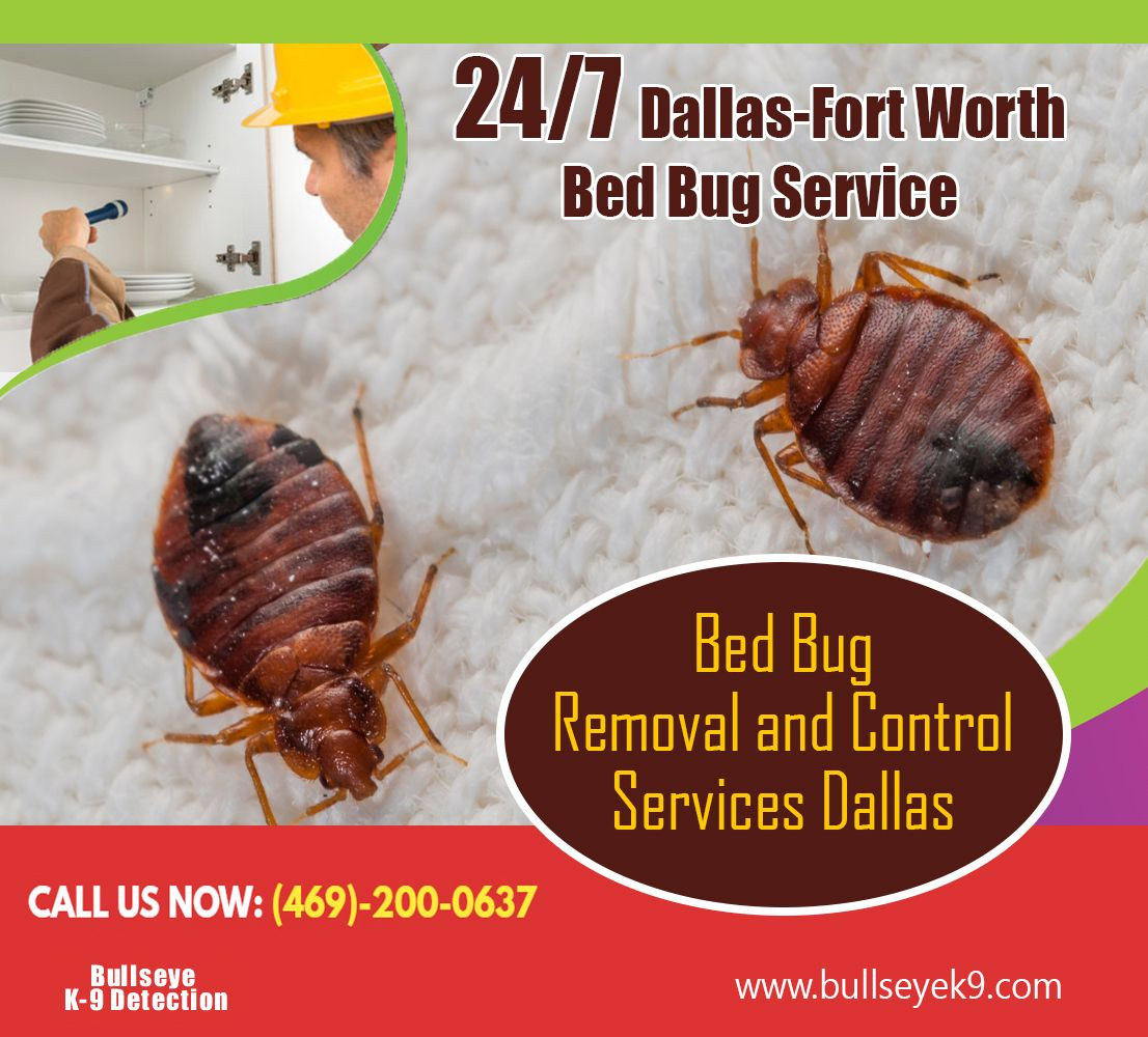Pin by bedbug removal on Bed Bug Detector Bed bugs