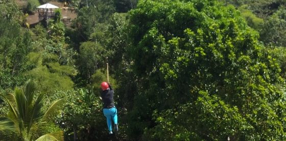 Zipline Adventure Ocho Rios - This was one of the first adventure tourism activity developed in Jamaica by Derek Evans better known as Mr Motivator, a fitness celebrity on morning television in UK and motivational speaker. This is a family run business and you can find Derek there most days taking charge and making sure you have the best experience possible.