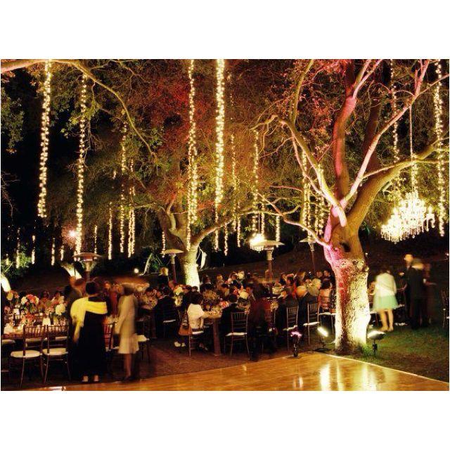 #treelights