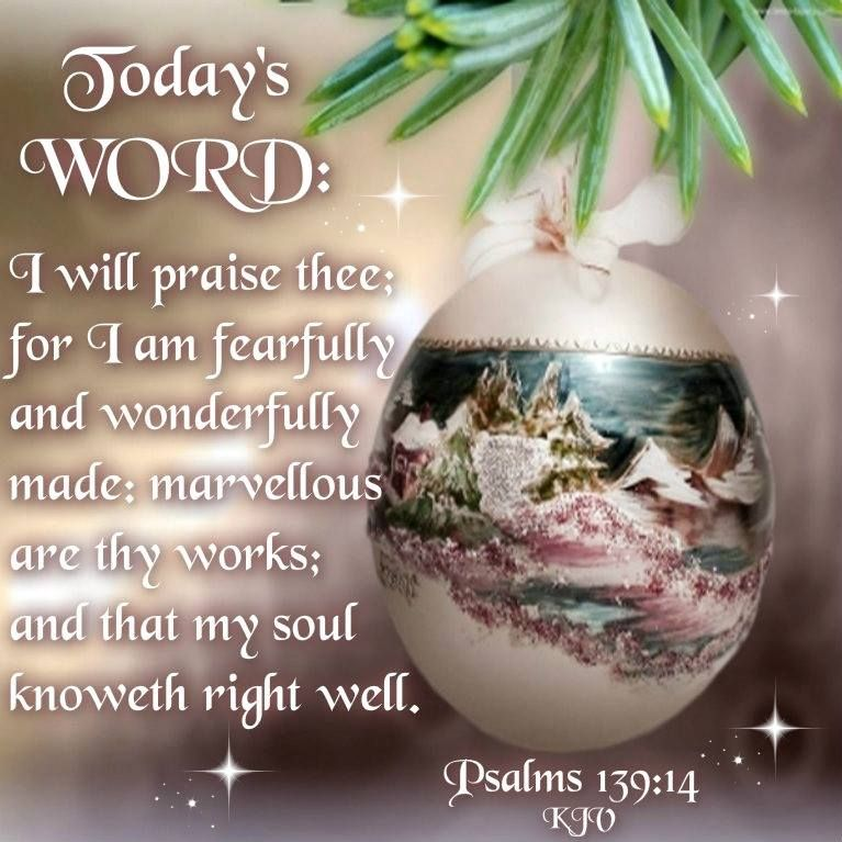 Today's Word: Psalm 139: 14