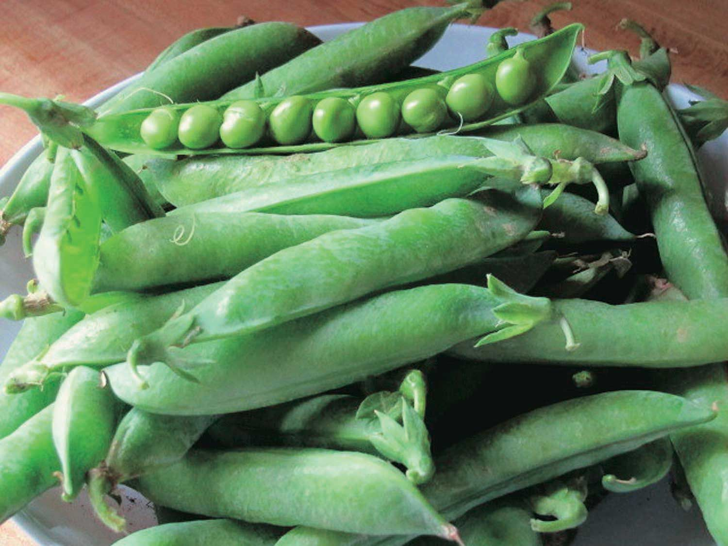 Peas mr big 55 days in 2020 with images organic