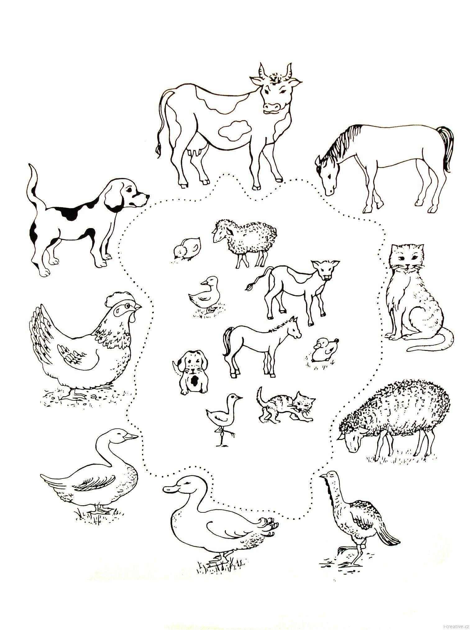 Výsledek obrázku pro zvířata a jejich mláďata pracovní listy