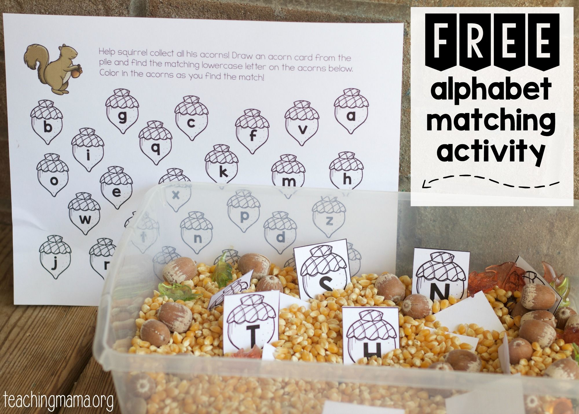 Squirrel Alphabet Matching Activity