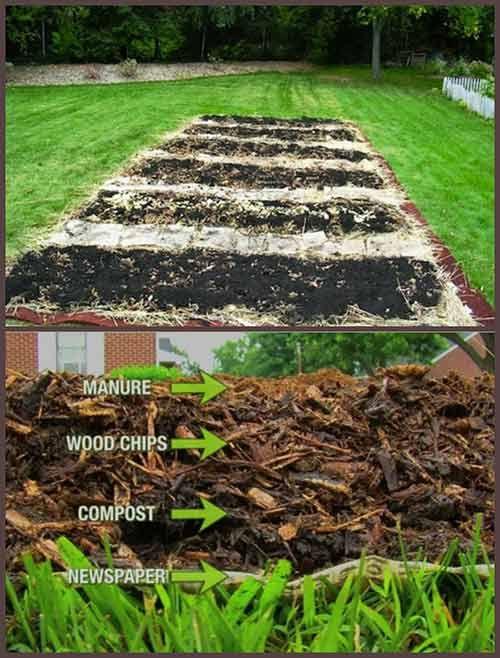 How To Back To Eden Garden Iseeidoimake Organic Gardening Tips