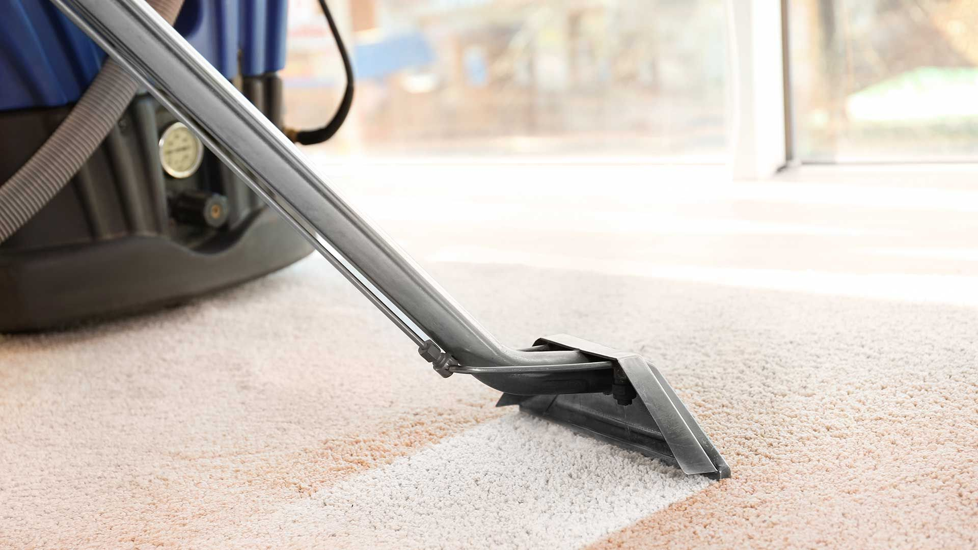 4 Reasons Why You Should Get Your Carpet Professionally Cleaned Cleaning Upholstery Green Carpet Cleaning Professional Carpet Cleaning