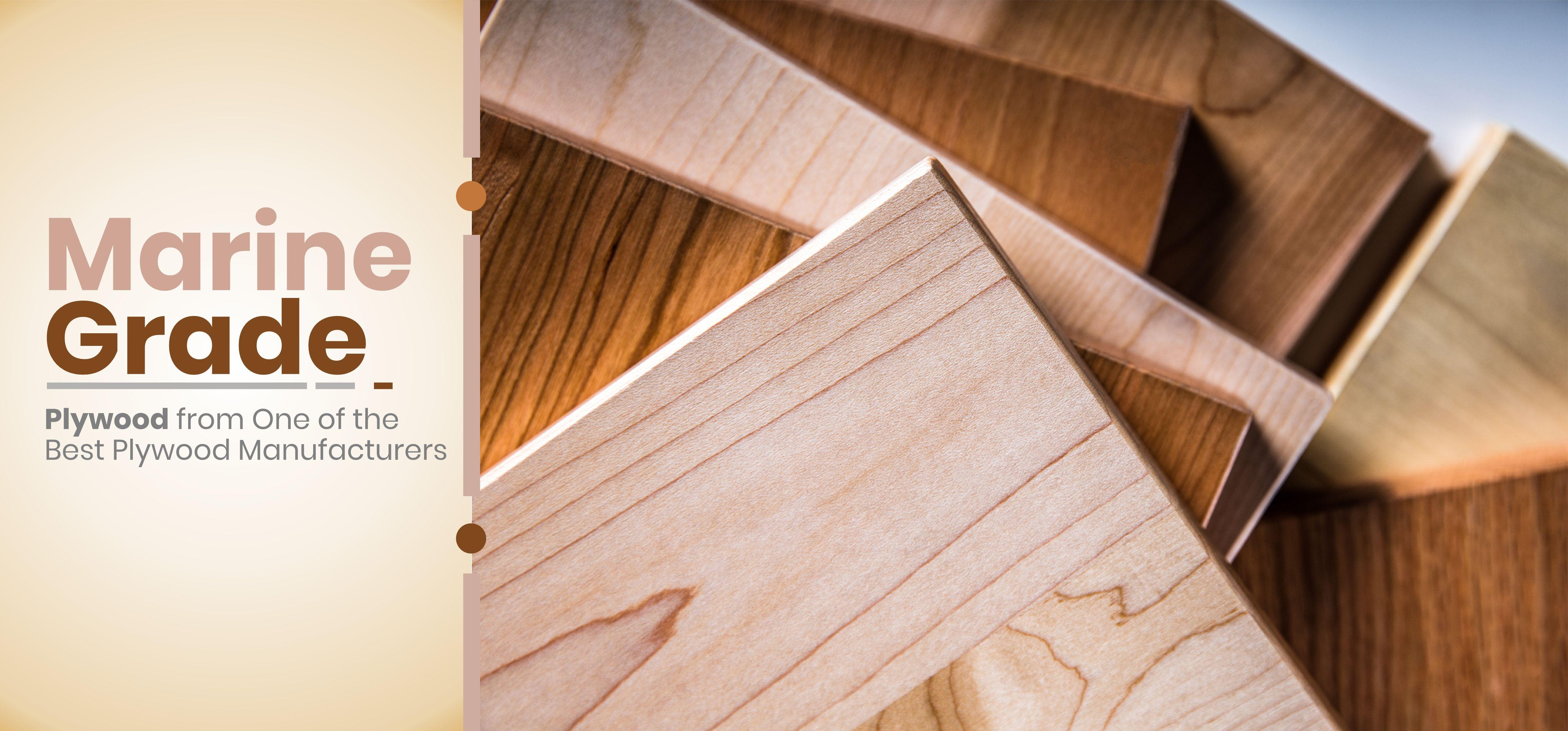 Marine Grade Plywood Kitchen Cabinets Virgo Group Marine Grade Plywood Plywood Kitchen Plywood Design