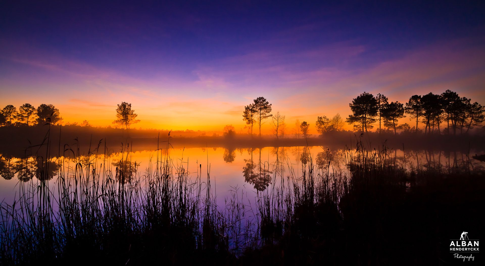Sunrise over the Landes Forest | Alban Henderyckx Photography