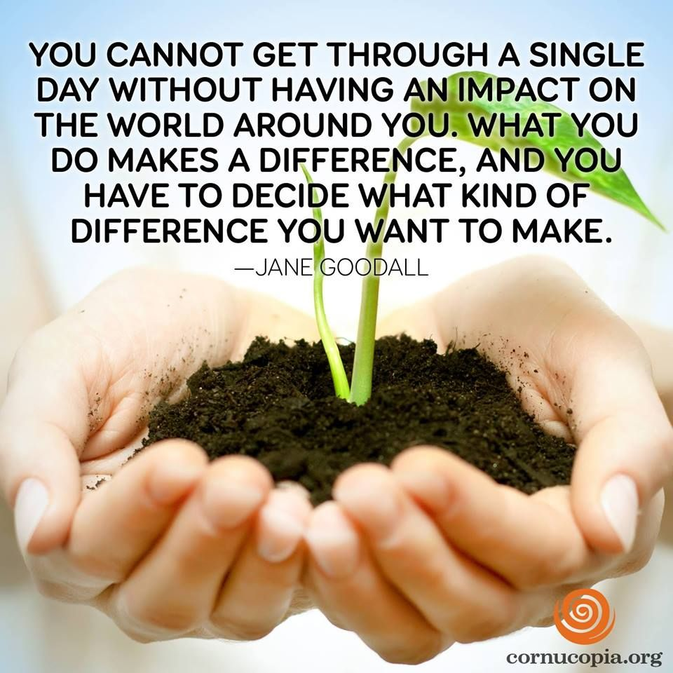 Love it! Have you decided in which way you'll make an impact on the world TODAY? Share it with us & comment below!   Picture created by The Cornucopia Institute (http://www.cornucopia.org/)
