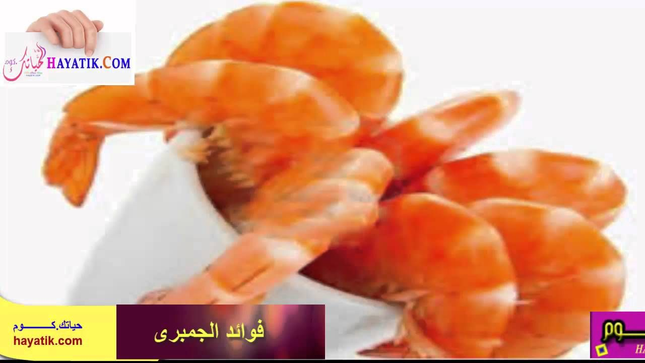 فوائد الجمبرى الكثيرة والمتعددة فوائد الجمبري للحامل فوائد شوربة الجمبرى Food Meat Shrimp
